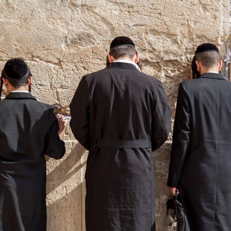 Weekly Torah Portion